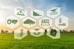 La Regione investe su innovazione e ambiente: 8,3 ML€ per i Gruppi Operativi